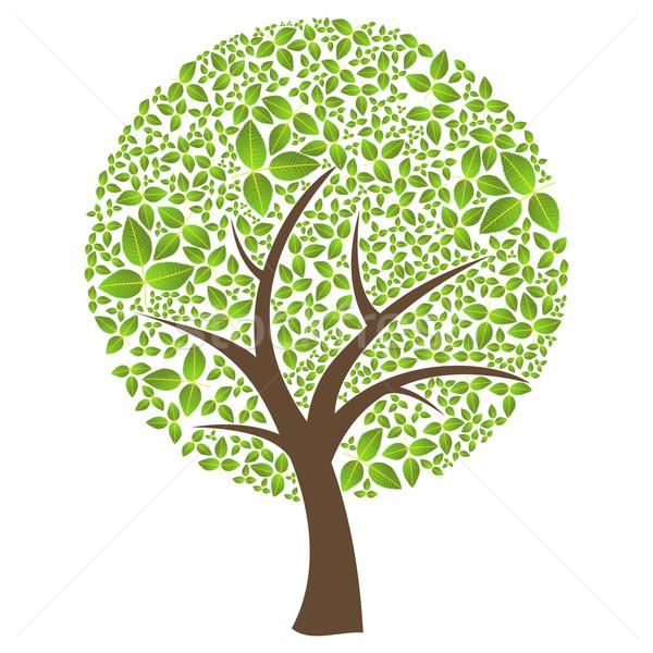 Сток-фото: изолированный · аннотация · лист · весны · время · дерево