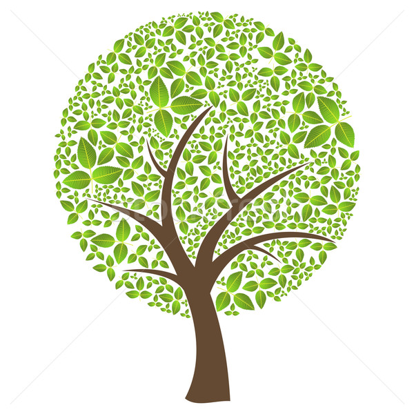 Isolado abstrato folha primavera tempo árvore Foto stock © cienpies