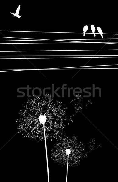 Dandelion and bird background Stock photo © cienpies