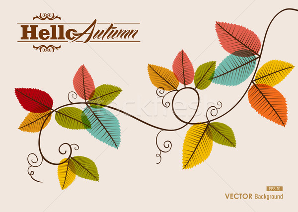 Hello autumn text. Tree branch with leaves background. EPS10 fil Stock photo © cienpies