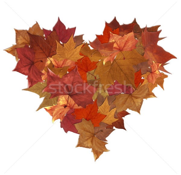 Autumn leaves heart shape Stock photo © cienpies