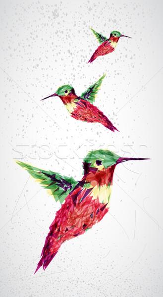 Humming bird geometric illustration.  Stock photo © cienpies