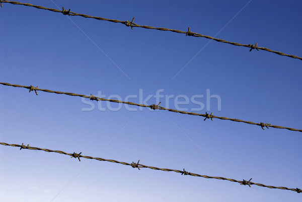 Cut wire fence on a dark blue sky Stock photo © cienpies