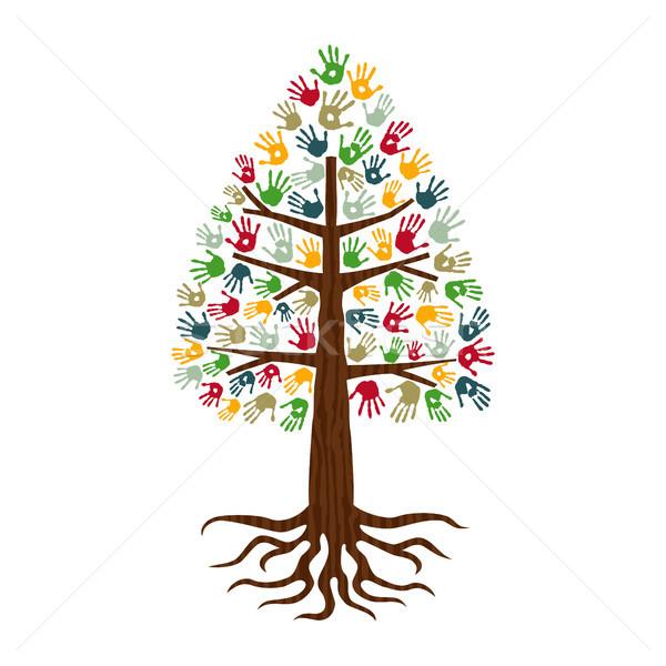 松樹 手 打印 藝術 人 商業照片 © cienpies
