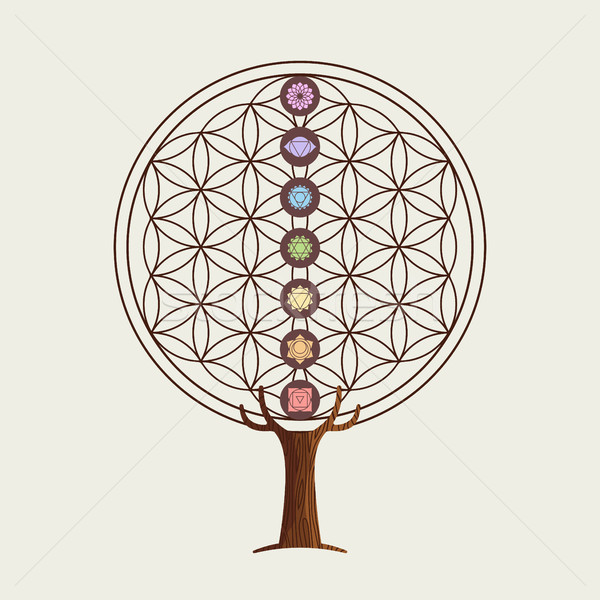 Flower of life concept tree with yoga chakras Stock photo © cienpies