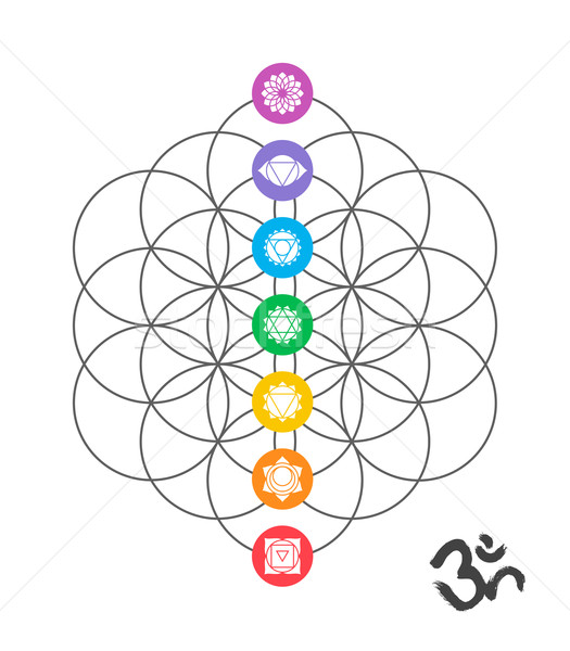 Colorful chakra icons on Sacred geometry design Stock photo © cienpies