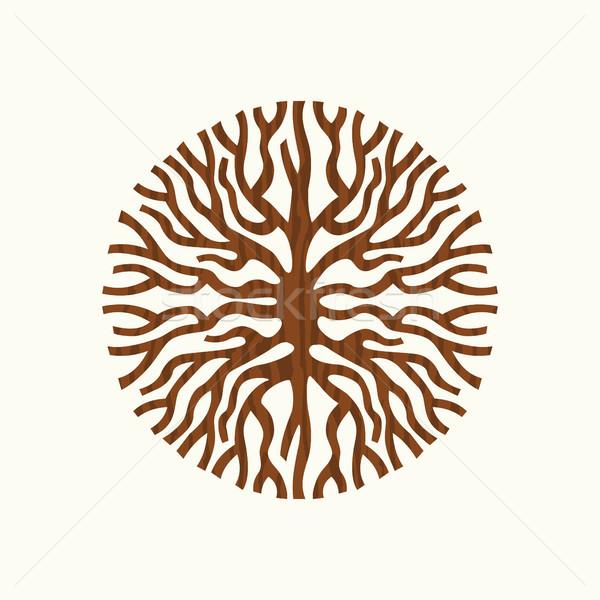 árbol raíz naturaleza símbolo ilustración resumen Foto stock © cienpies