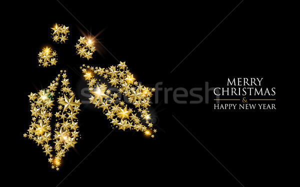 Christmas and New Year gold star holly leaf card Stock photo © cienpies