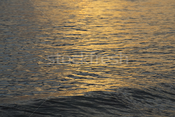 Ocean water surface with calm waves on sunset Stock photo © cienpies