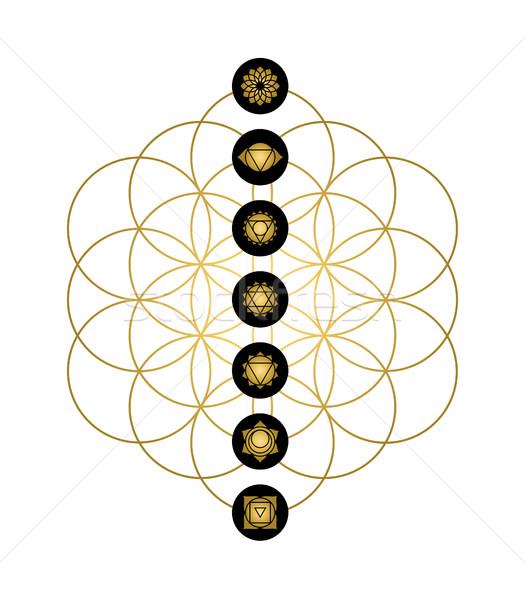 Modern yoga dizayn çakra simgeler altın Stok fotoğraf © cienpies