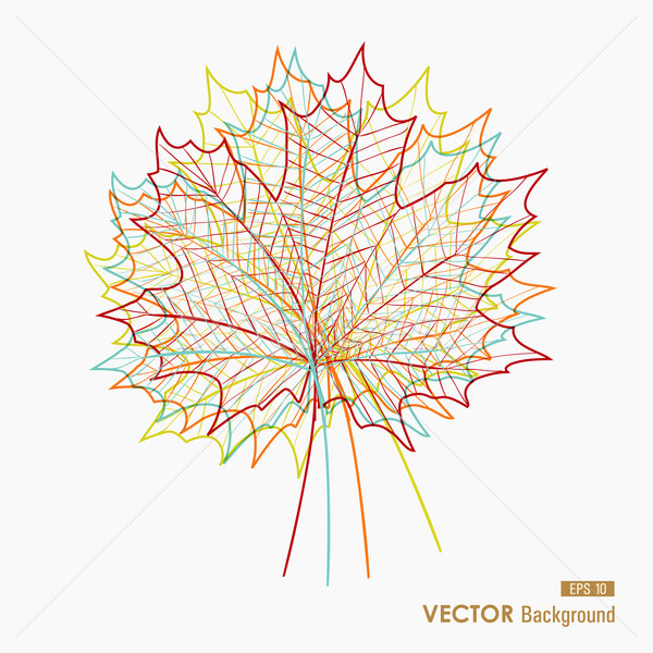 Colorful transparent leaves. Fall season background. EPS10 file. Stock photo © cienpies