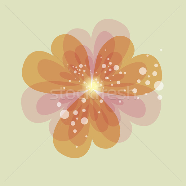 Colorful transparency heart flower Stock photo © cienpies