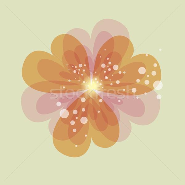Kolorowy przezroczystość serca kwiat wiosną miłości Zdjęcia stock © cienpies
