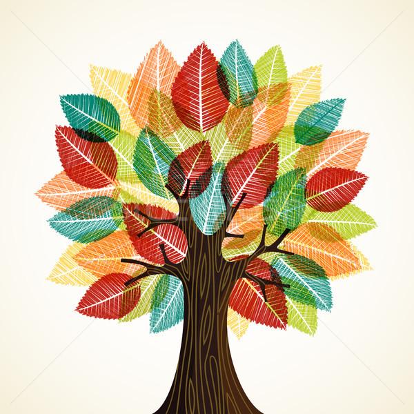 Photo stock: Arbre · nature · la · texture · du · bois · automne · couleur
