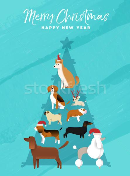 Noel yılbaşı çam ağacı köpek tebrik kartı neşeli Stok fotoğraf © cienpies
