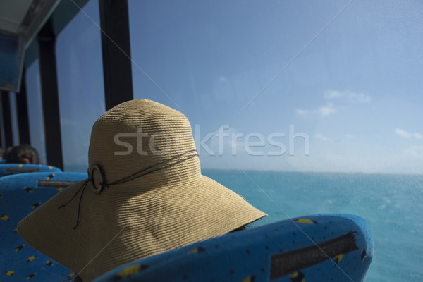 Fille touristiques plage chapeau Caraïbes croisière Photo stock © cienpies