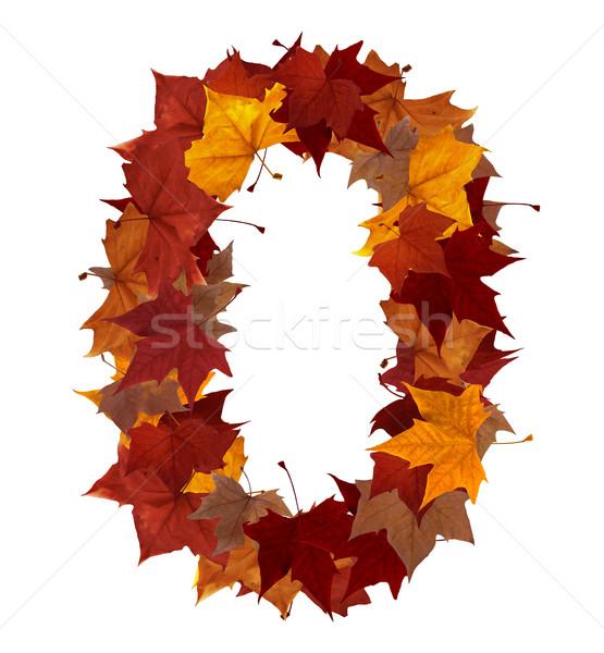 Szám nulla tarka ősz levél izolált Stock fotó © cienpies