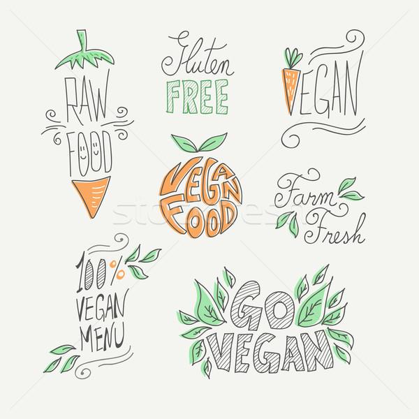Veganistisch rauw voedsel handgemaakt ingesteld Stockfoto © cienpies