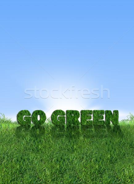 Groene energie groene teken vers gras Stockfoto © cienpies