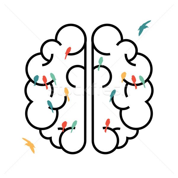 Imaginação projeto cérebro aves cérebro humano simples Foto stock © cienpies