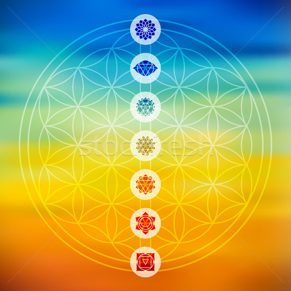 Sacred geometry with chakra icons colorful background Stock photo © cienpies