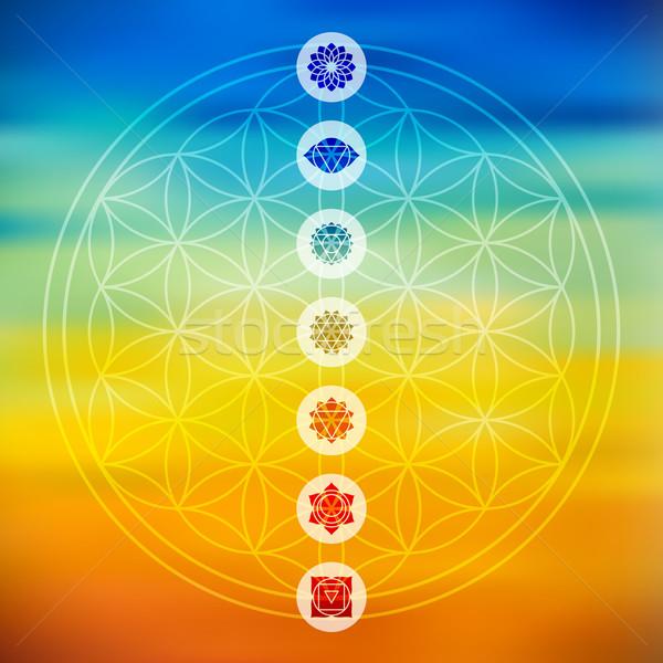 Sacré géométrie chakra icônes coloré fleur Photo stock © cienpies