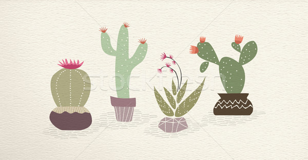 Kaktusz mexikói művészet növény dekoráció szett Stock fotó © cienpies