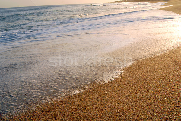 Stock photo: Wave foam on the shore