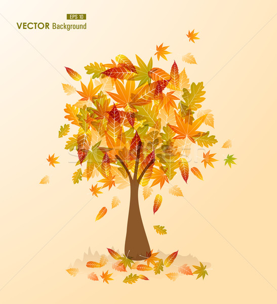 Fall season tree shape with leaves falling EPS10 file background Stock photo © cienpies