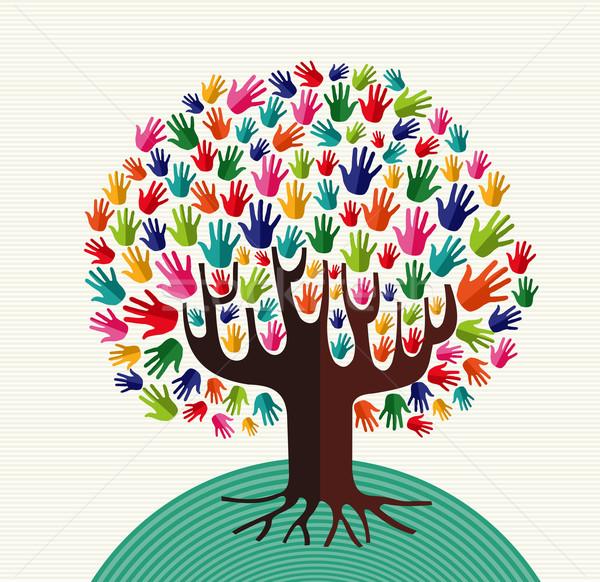 Kleurrijk solidariteit boom handen diversiteit illustratie Stockfoto © cienpies