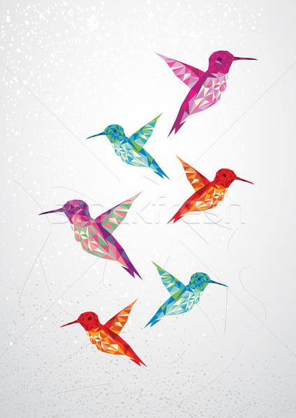 Beautiful humming birds illustration. Stock photo © cienpies