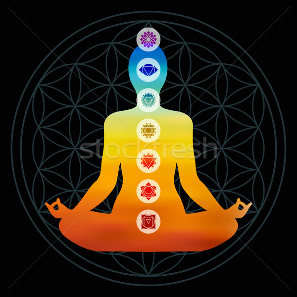 Csakra ikonok színes test sziluett jóga póz Stock fotó © cienpies