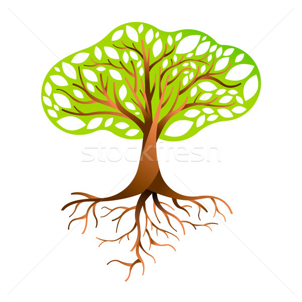 Green tree with branches and roots Stock photo © cienpies