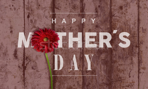 Happy Mothers day vintage background Stock photo © cienpies