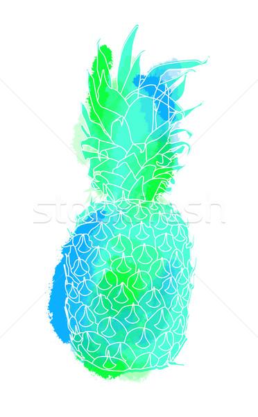 красочный лет ананаса иллюстрация искусства фрукты Сток-фото © cienpies