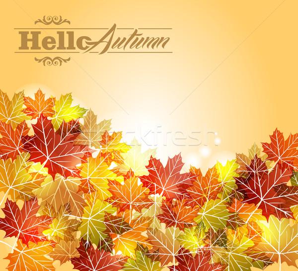 Klasszikus őszi levelek átláthatóság eps10 akta ősz Stock fotó © cienpies