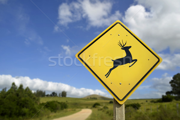 Deer crossing road sign for wildlife conservation Stock photo © cienpies