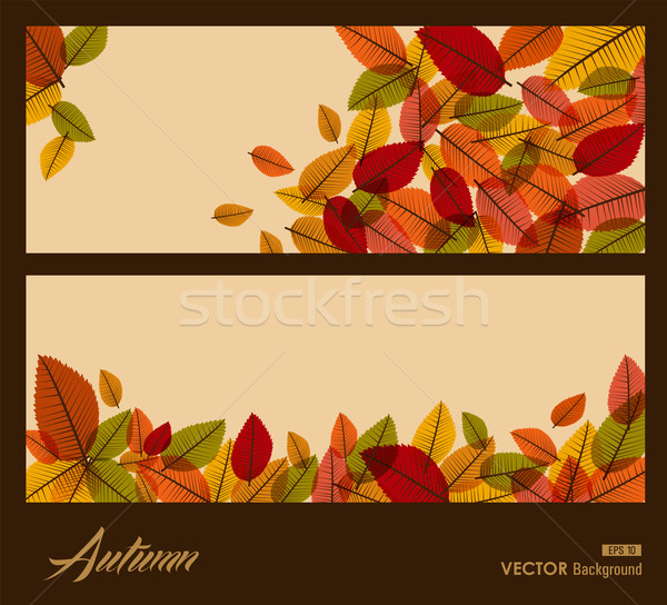 Autumn transparent leaves. Fall season background. EPS10 file. Stock photo © cienpies