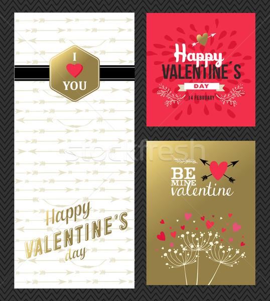 Dia dos namorados retro cartão conjunto ouro rosa Foto stock © cienpies