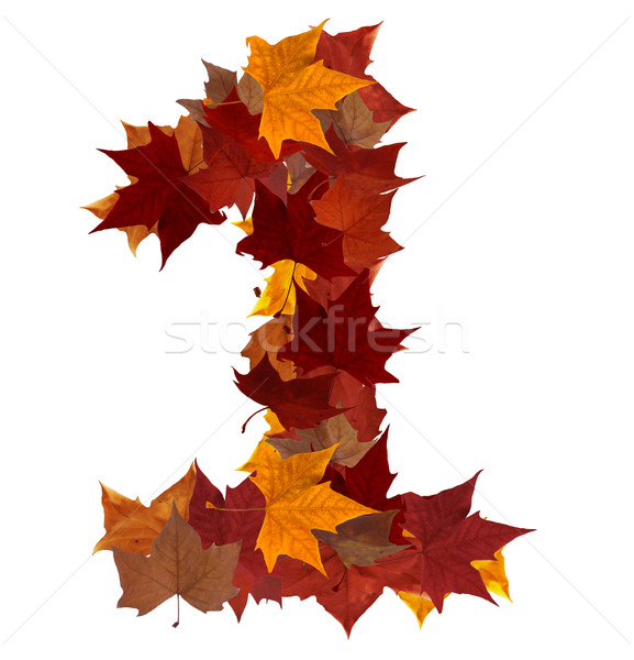 Stock photo: Number one multicolored fall leaf composition isolated