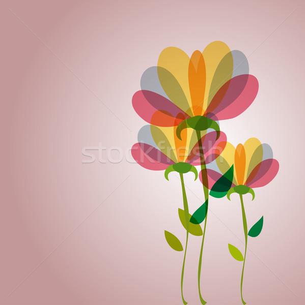 Cute transparency flowers Stock photo © cienpies