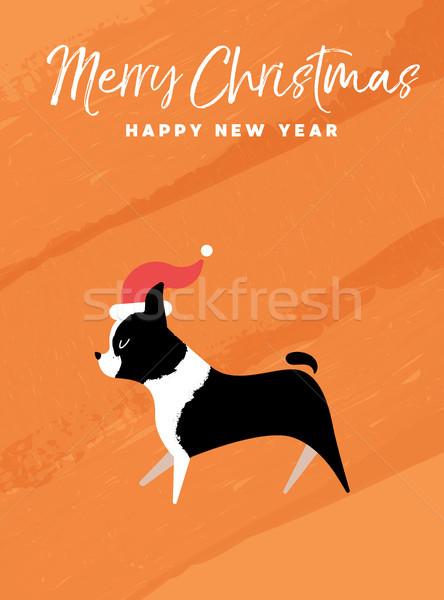 Рождества Новый год праздник Бостон терьер собака Сток-фото © cienpies