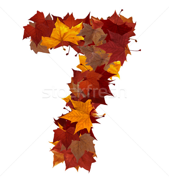 Number seven multicolored fall leaf composition isolated Stock photo © cienpies