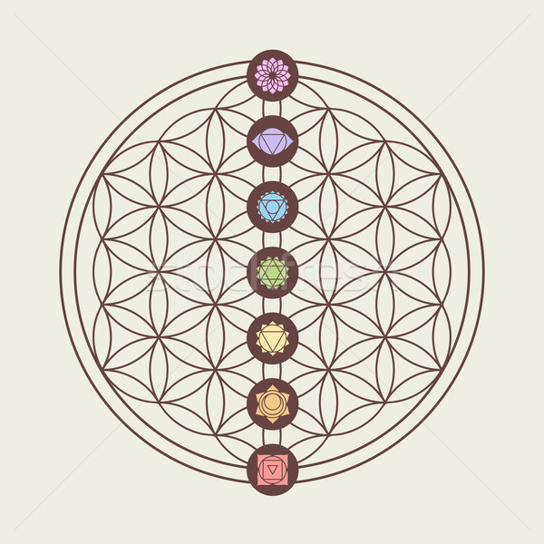 Chakra icons on sacred geometry design Stock photo © cienpies