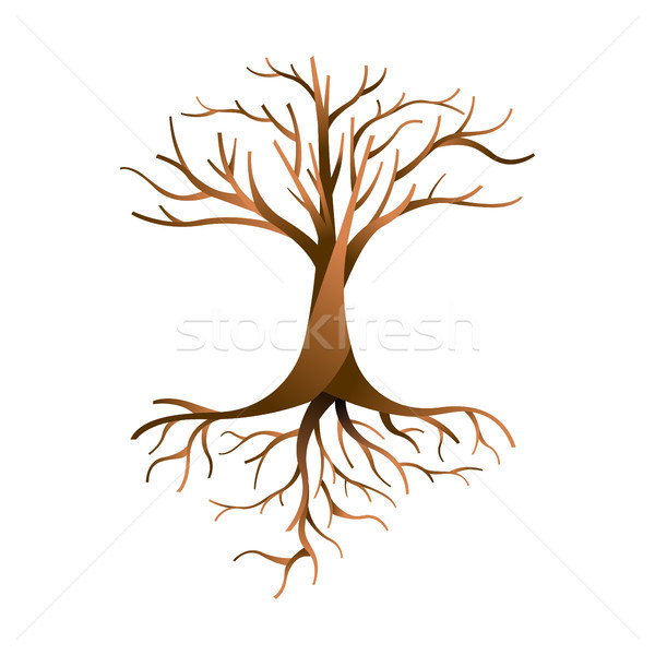 Empty tree isolated with branches and roots Stock photo © cienpies