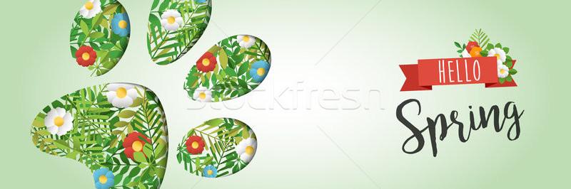 Olá primavera animal pata papel Foto stock © cienpies