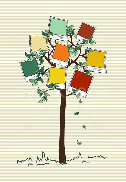Vintage colori immediato foto albero colorato Foto d'archivio © cienpies