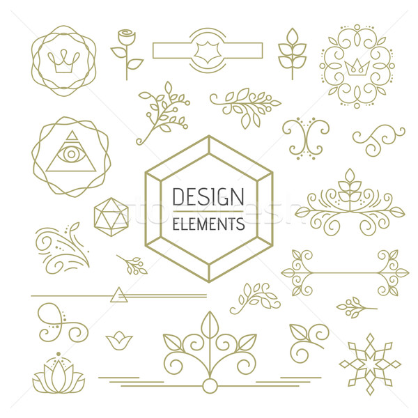 Design element set mono line art ornamental nature Stock photo © cienpies