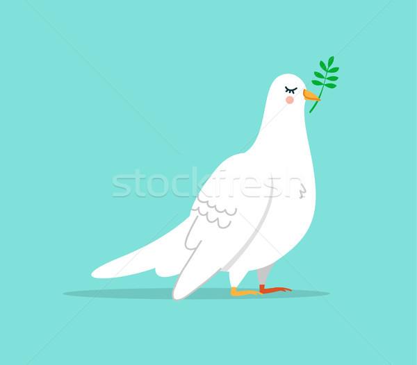 Bonitinho branco pomba pássaro ilustração isolado Foto stock © cienpies