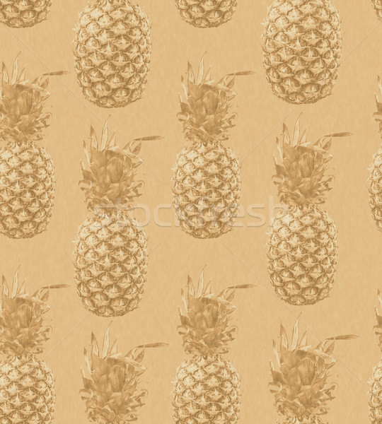 Ananas sepia kolor vintage Zdjęcia stock © cienpies